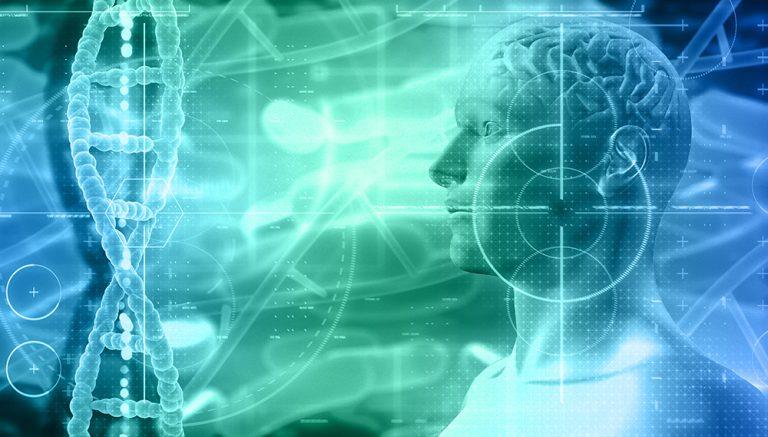 Células e outras estruturas do corpo humano durante Avaliação Bioenergética